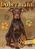 Dobermann - Gazdiképző kisokos /Állattartók kézikönyve