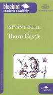 THORN CASTLE /BLUEBIRD ACADEMY A2