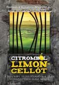 Citromból limoncellót /A veszteség feldolgozásától lélek újjászületéséig olasz módra