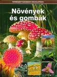 Növények és gombák /Természettudományi enciklopédia 7.