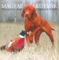 Magyar kutyák - Hungarian dogs - Ungarische Hunde 2019. naptár