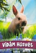 Vidám húsvét - kifestő §H