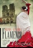Flamenco Párizsban