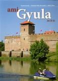 AMI GYULA (2 FÉLE BORÍTÓVAL)