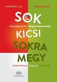 Sok kicsi sokra megy (német) - Gyakorlókönyv magyarul tanulóknak - Übungsbuch für Ungarischlernende