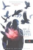 The Dream Thieves - Álomrablók /Hollófiúk 2. (puha)