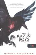 The Raven Boys - A hollófiúk 1. /Puha