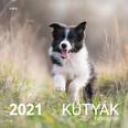 Kutyák Falinaptár 2021