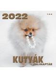 Kutyák falinaptár 2022